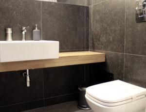economy studio bathroom